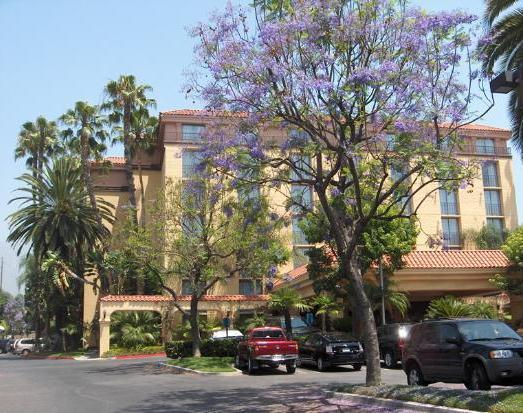 Photo 3 - Embassy Suites Hotel Arcadia - Pasadena Area