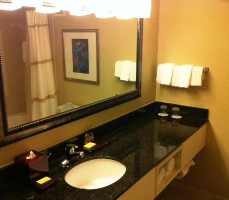 Photo 3 - Houston Marriott South at Hobby Airport