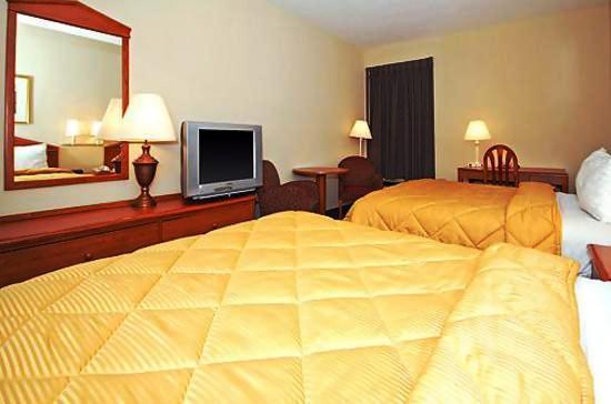 Photo 3 - Comfort Inn & Suites Colonnade
