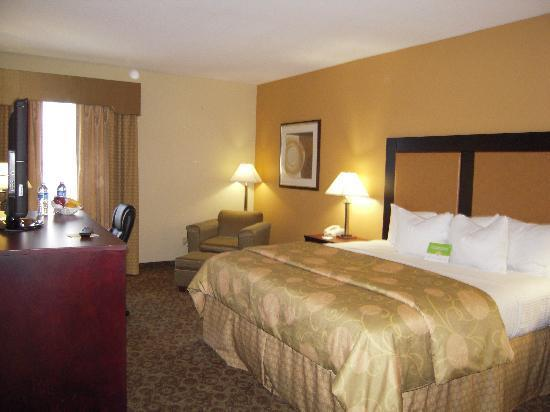 Photo 3 - Cocca's Inn & Suites Wolf Road