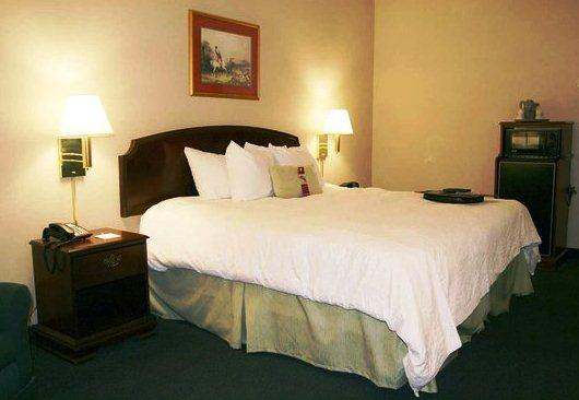 Photo 3 - Hampton Inn and Suites Florence-Civic Center