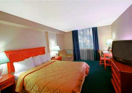 Photo 1 - Comfort Hotel Airport North