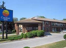 Photo 2 - Comfort Inn Ambassador Bridge