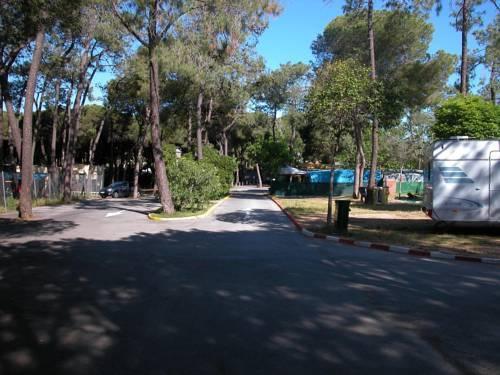 Photo 3 - Camping la Buganvilla
