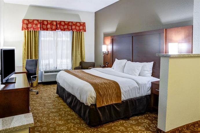 Photo 3 - Comfort Suites Kansas City