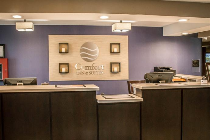 Photo 3 - Comfort Inn & Suites Wolf Road